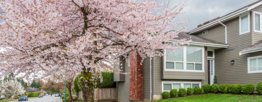 Spring Plumbing Tips for Homeowners